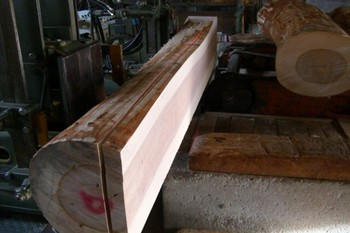 樺材の製材